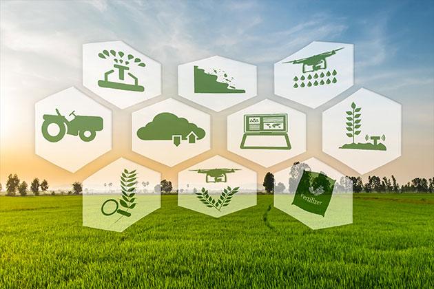Sistem Pertanian Berkelanjutan
