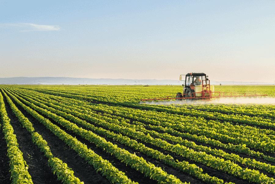 Kewirausahaan Pertanian Berkelanjutan